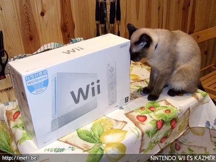 Nintendo Wii és Kázmér