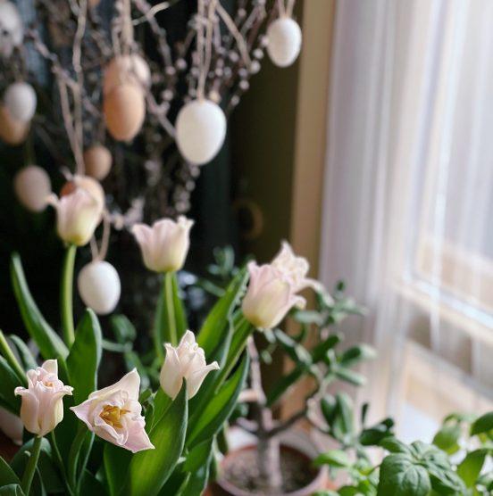 Húsvét itthon a koronavírus járvány idején